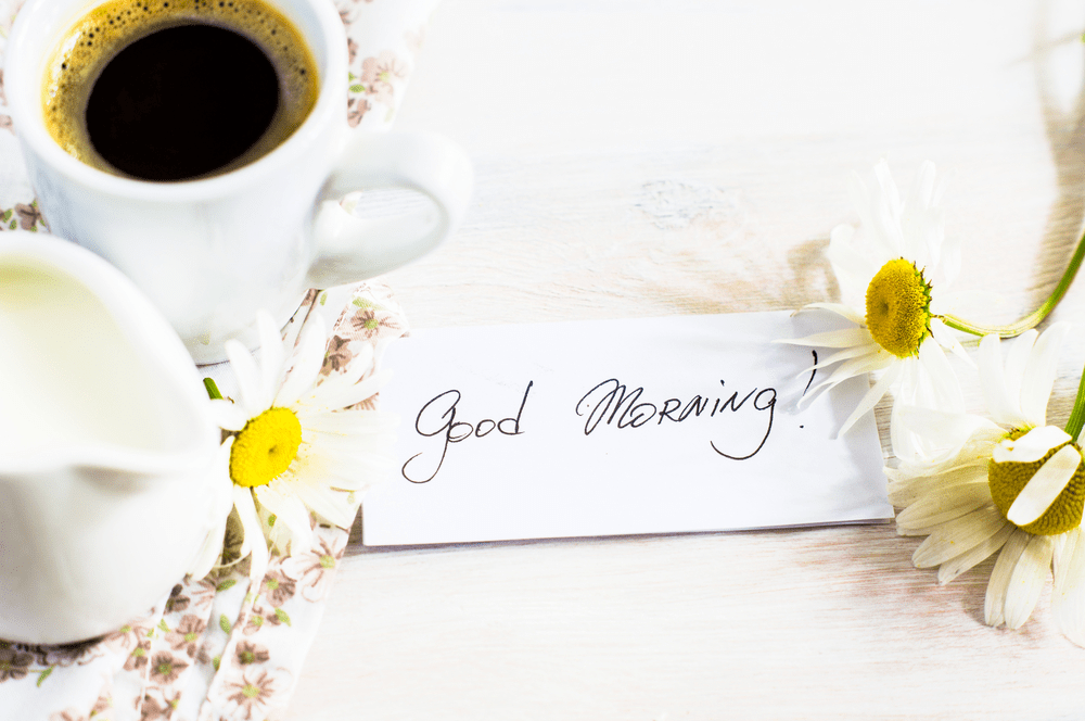 good morning hd images with beautiful flowers