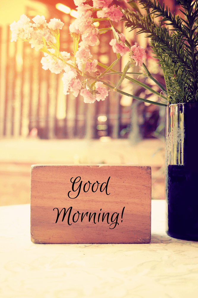 Good Morning Images HD Wallpapers Free Download [ Best Collection ]