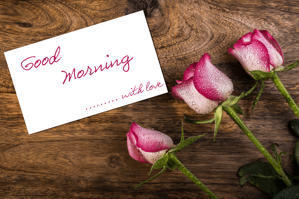 100 Best Good Morning Tuesday Quotes With Images Az Quotes