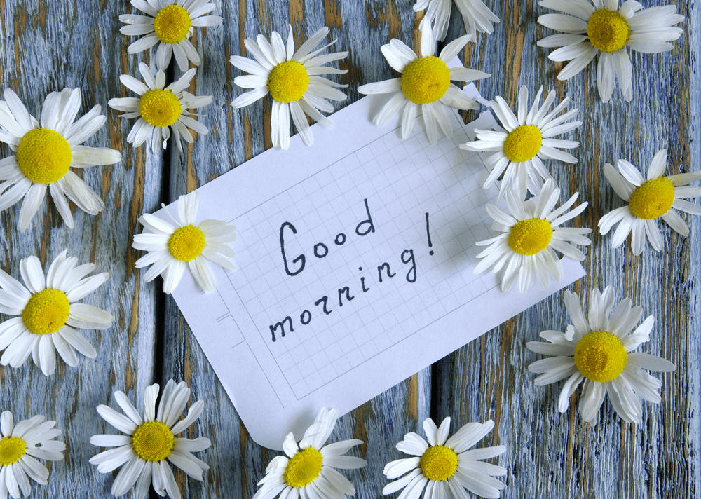 good morning images with bunch of flowers