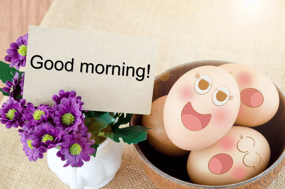 good morning images with flowers download