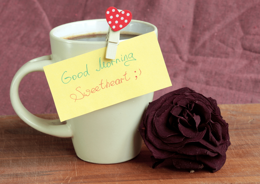 good morning images with rose flowers free download