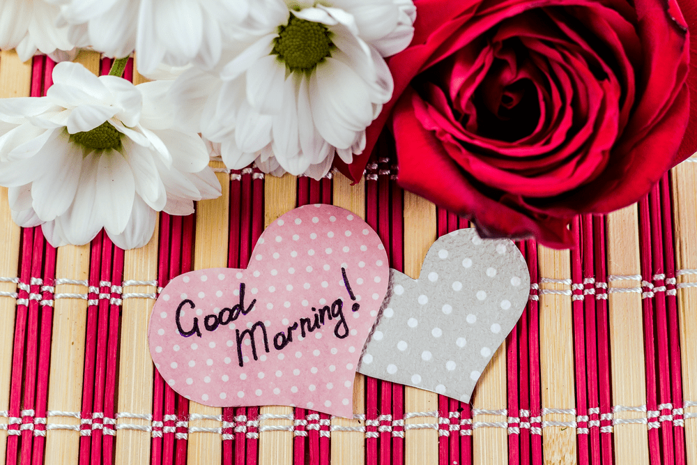 good morning images with rose flowers hd download