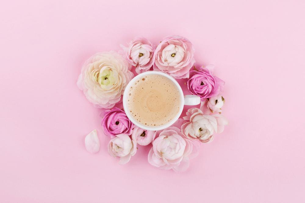 good morning white rose