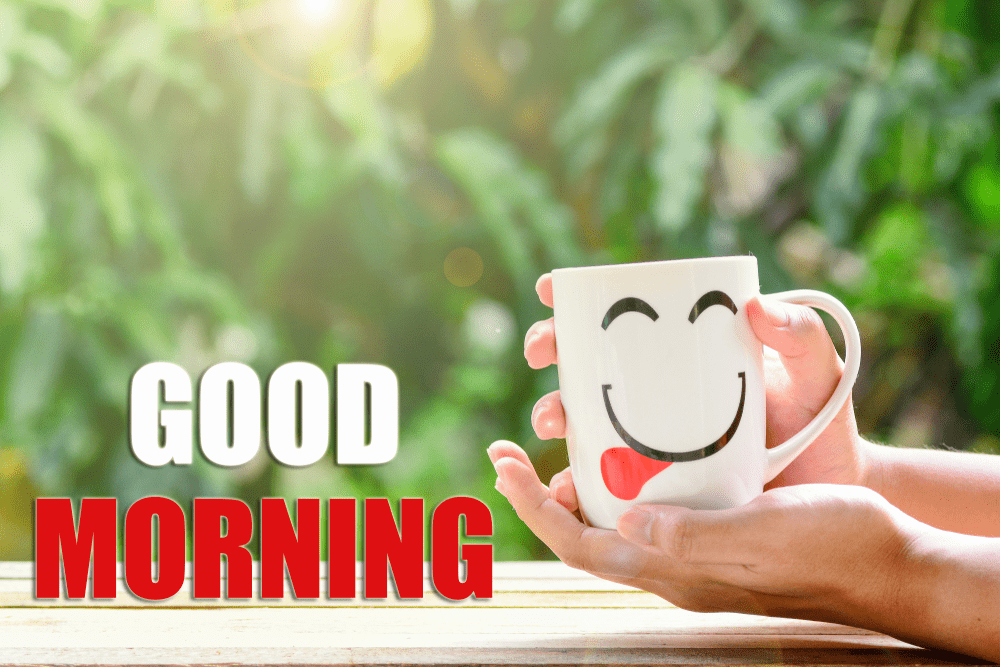 Good Morning Images Hd Wallpapers Free Download Best