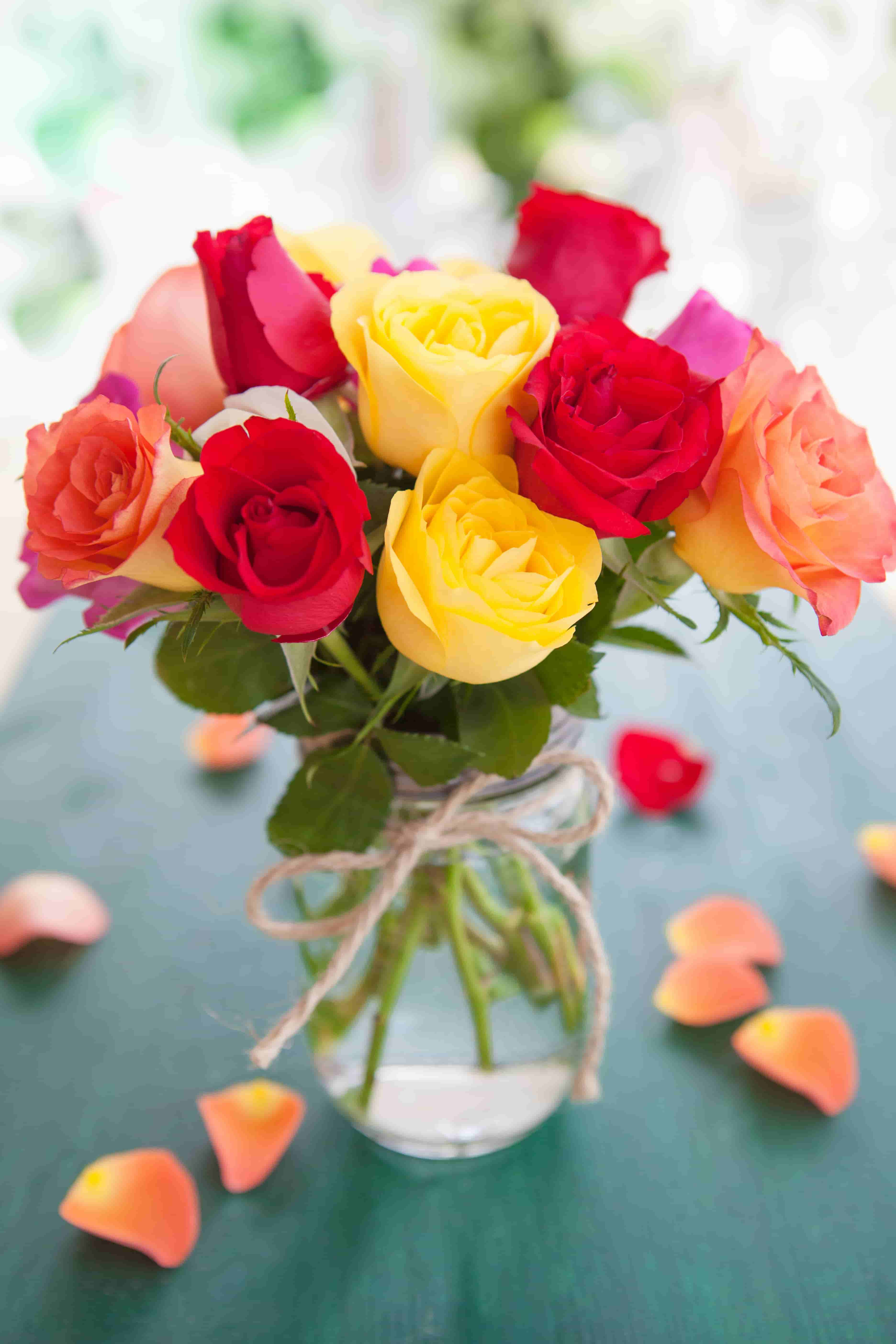 colorful roses images